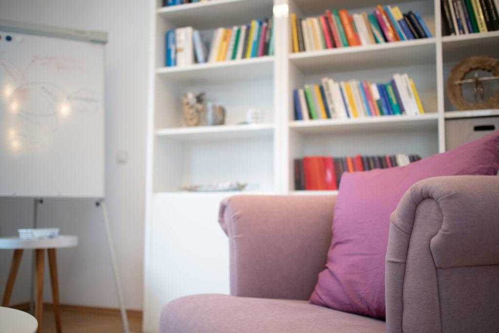 Praxisraum, Rosa Sessel mit Bücherregal im BG